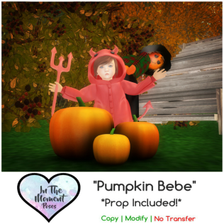 .In The Moment.Families. Pumpkin Bebe ~ {Ad}